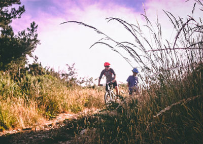 Rostrevor Mountain Bike Trail